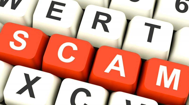 Are You Getting Scammed From Your Web Design Firm? 5