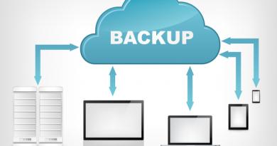 A Bushes For Internet Back-Up 2