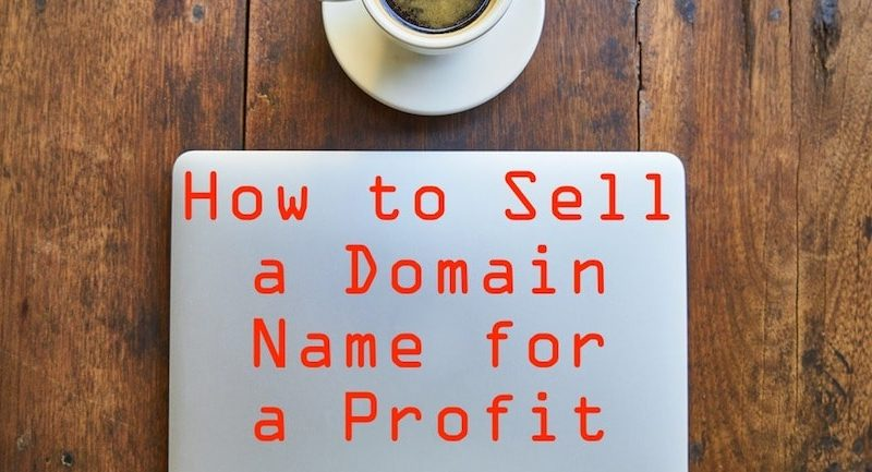 How To Truly Profit From Domains 4