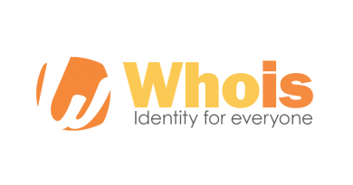 Web Domain Name Whois Search and Query Info 4