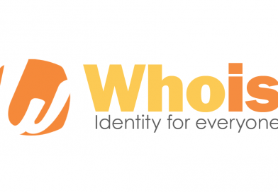 Web Domain Name Whois Search and Query Info