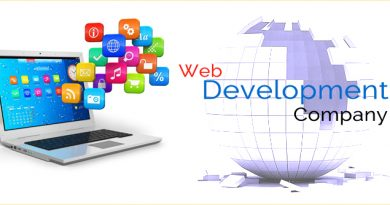 A Professional Web Development Company To Suit Your Needs 2