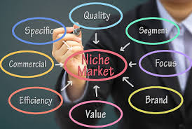 An effective Niche Matches Your Abilities and Knowledge 3