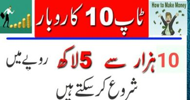 small business ideas in Pakistan, small business,