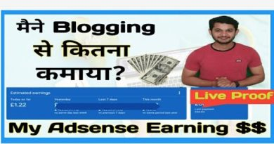 My Google Adsense Income With Blogging | How Much i Earned Motivational