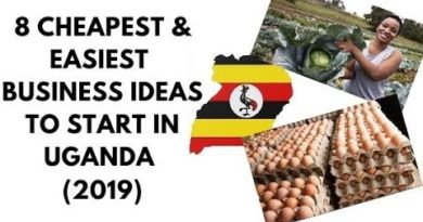 Uganda (2019) ,8 Cheapest & Easiest Business Ideas to start in Uganda this 2019, business in uganda