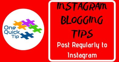 INSTAGRAM BLOGGING TIPS: Post Regularly to Instagram - One Quick Tip