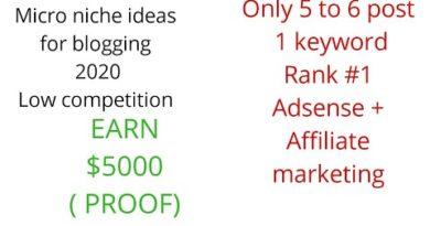 Most PROFITABLE MICRO NICHE TOPIC/IDEA FOR BLOGGING 2020 ( #1 on Google) Earn $5000 PROOF