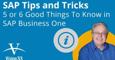 Tips and Tricks - 6 Things to Know in SAP Business One