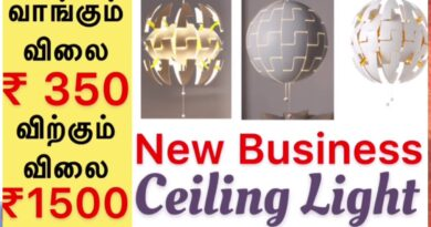Ceiling Lamp Business   New High Income Business   High Demand Business   Business Tips Tamil
