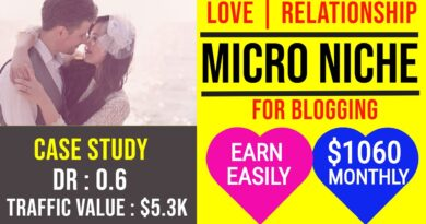 Earn $1060 through Blogging   Love & Relationship Micro Niche with Low DR Niche Website Case study