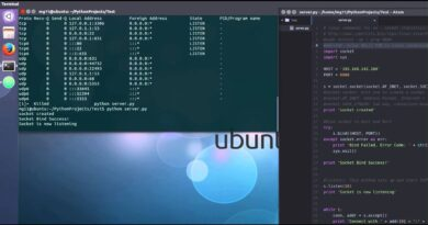 Python socket program Server/ Client with Android Client