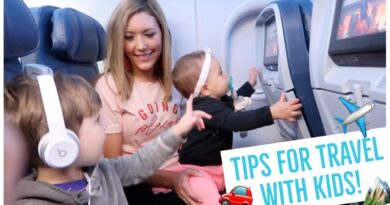 TIPS FOR TRAVELING WITH A BABY + TODDLER ✈️🚗 | AIRPLANE + ROADTRIP HACKS FOR KIDS! Brianna Ok 7