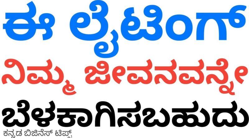 ಈ ಲೈಟಿಂಗ್ ನಿಮ್ಮ ಜೀವನವನ್ನೇ ಬೆಳಗಿಸಬಹುದು | Kannada Business Tips