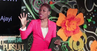 Awesomely In a position: The Energy of Running a blog, Writing, and Social Media | Luvvie Ajayi | TEDxRoadTown 8